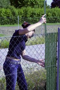 Faq le domande pi frequenti sulle aste da recinzione - Rete per gatti giardino ...